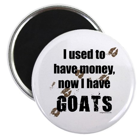 money before, goats now Magnet