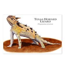 Texas Horned Lizard Postcards (Package of 8)