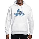 Chincoteague Pony Hooded Sweatshirt