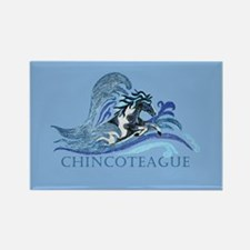 Chincoteague Pony Rectangle Magnet