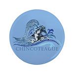 Chincoteague Pony 3.5