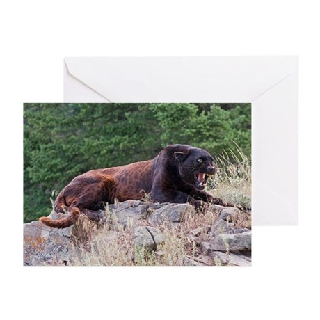 Black Leopard Greeting Cards (Pk of 10)