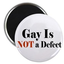 Gay is NOT a Defect Magnet