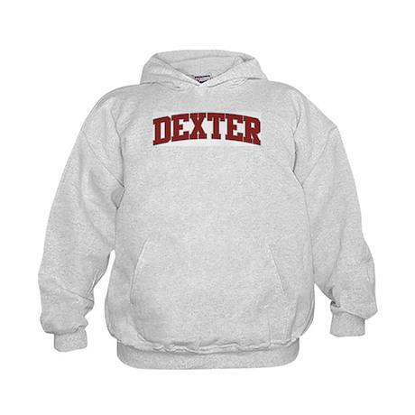 DEXTER Design Kids Hoodie