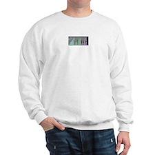 Pregnancy Timeline Sweatshirt