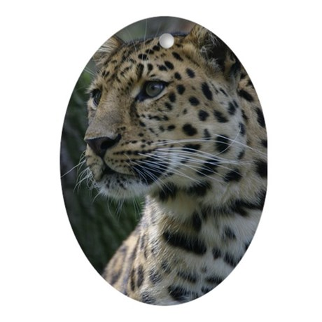Leopard Oval Ornament