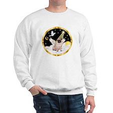 Night Flight/ Pug Sweatshirt