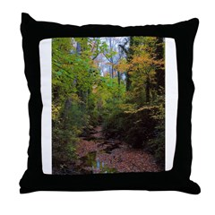 Michael Traubel Throw Pillow