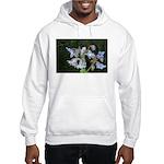 Janet Schroeder Hooded Sweatshirt