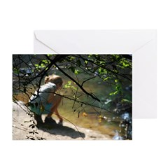 Sandra Pennecke Greeting Cards (Pk of 10)