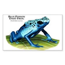 Blue Poison Dart Frog Rectangle Decal