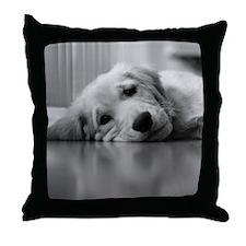 Pooped Golden Retriever Puppy Throw Pillow