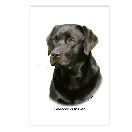 Labrador Retriever 9A054D-23a Postcards (Package o