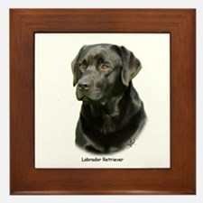 Labrador Retriever 9A054D-23a Framed Tile