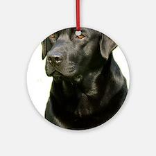 Labrador Retriever 9A054D-23a Ornament (Round)