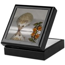 Hedgehog Keepsake Box