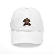 Chocolate Labrador Retriever puppy 9Y270D-050 Baseball Baseball Cap