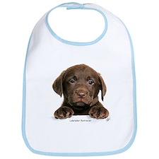 Chocolate Labrador Retriever puppy 9Y270D-050 Bib