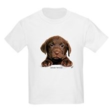 Chocolate Labrador Retriever puppy 9Y270D-050 T-Shirt