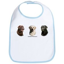Labrador Retrievers Bib
