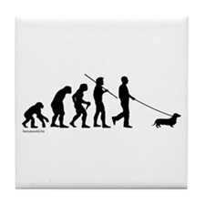 Dachshund Evolution Tile Coaster
