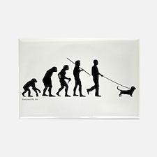 Basset Evolution Rectangle Magnet (100 pack)