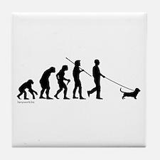 Basset Evolution Tile Coaster