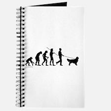Golden Evolution Journal