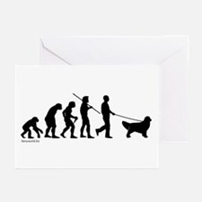 Golden Evolution Greeting Cards (Pk of 20)