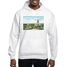 Springfield Illinois IL Hoodie Sweatshirt