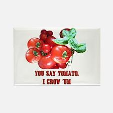 Tomato Rectangle Magnet