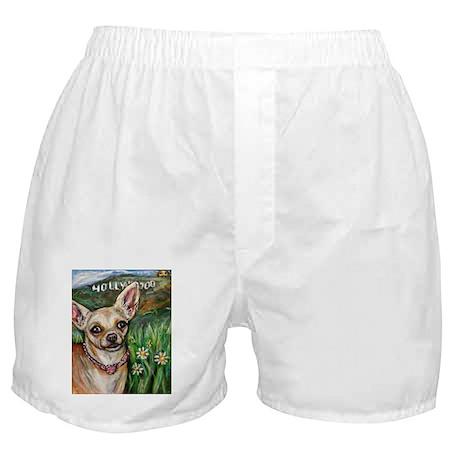 Hollywood Chihuahua Boxer Shorts