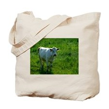 Charolais cow in field Tote Bag