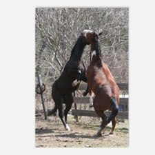 Horseplay Postcards (Package of 8)