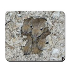 Lil' Whiskers Gerbil Mousepad