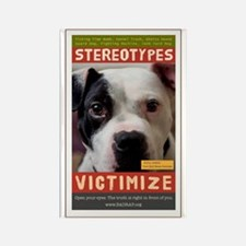 Stereotypes Victimize Rectangle Magnet