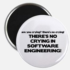 There's No Crying in Software Engineering Magnet