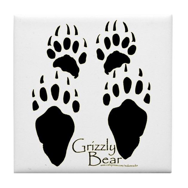 bear footprints template - grizzly bear tracks design tile coaster by maketracks