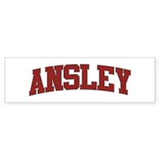 ANSLEY Design Bumper Bumper Sticker