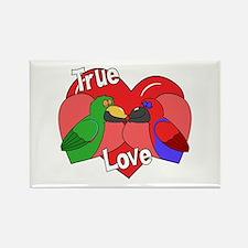 True Love Eclectus Rectangle Magnet
