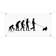 Sheltie Evolution Banner