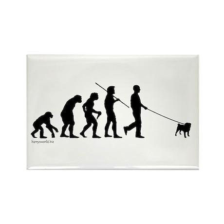 Pug Evolution Rectangle Magnet (10 pack)