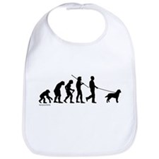 Lab Evolution Bib