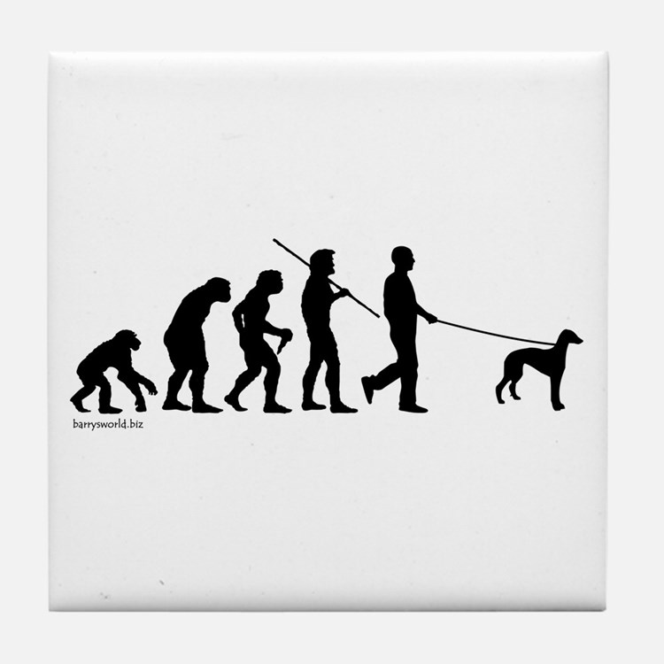 Greyhound Evolution Tile Coaster