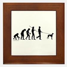 Greyhound Evolution Framed Tile