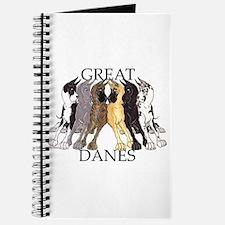6C Lean GDs Journal