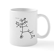Darwin's Tree Small Mug