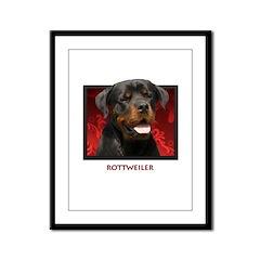Rottweiler Framed Panel Print