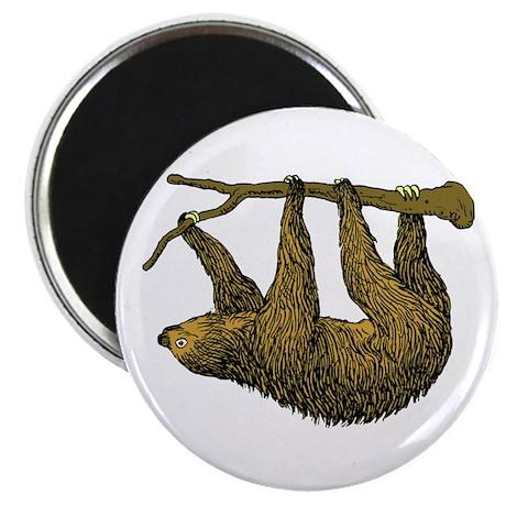 Sloth Magnet