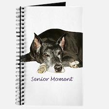 Senior Moment Journal